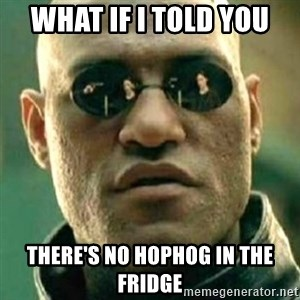 what if i told you matri - What if I told you there's no hophog in the fridge