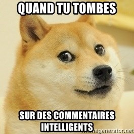 Dogeeeee - Quand tu tombes Sur des commentaires intelligents