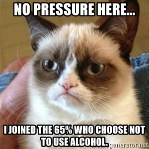 Grumpy Cat  - no pressure here... I joined the 65% who choose not to use alcohol.