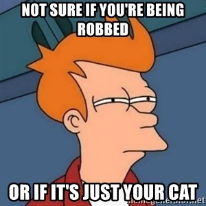 Not sure if troll - Not sure if you're being robbed or if it's just your cat