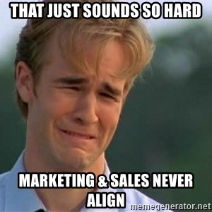 James Van Der Beek - That just sounds so hard Marketing & Sales Never Align