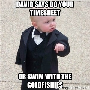 Mafia Baby - david says do your timesheet or swim with the goldfishies