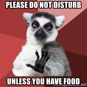 Chill Out Lemur - please do not disturb  unless you have food