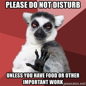 Chill Out Lemur - please do not disturb unless you have food or other important work