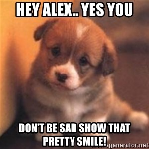 cute puppy - Hey Alex.. yes you Don't be sad show that pretty smile!