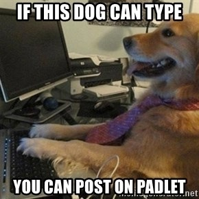I have no idea what I'm doing - Dog with Tie - If this dog can type you can post on padlet