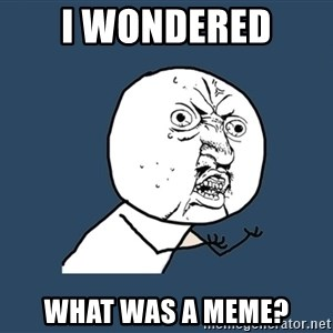 Y U No - I wondered  What was a meme?