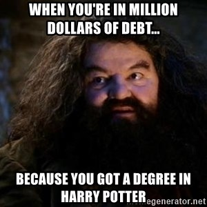 Yer A Wizard Harry Hagrid - When you're in million dollars of debt... because you got a degree in Harry Potter