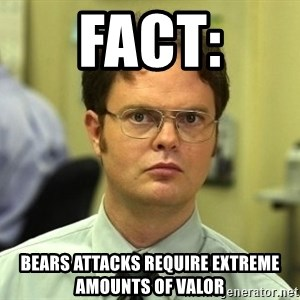 Dwight Schrute - FACt: Bears attacks require extreme amounts of valor