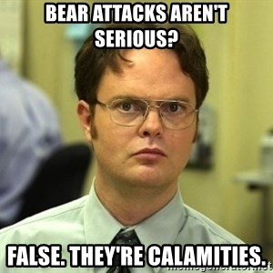 Dwight Schrute - Bear attacks aren't serious? False. They're calamities.