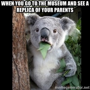 Koala can't believe it - when you go to the museum and see a replica of your parents