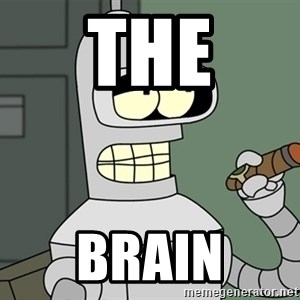 Typical Bender - the brain