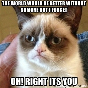 Grumpy Cat  - The world would be better without somone but i forget Oh! right its you