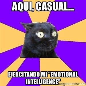 "Anxiety Cat - Aqui, casual... Ejercitando mi ""emotional intelligence"""