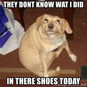 Oh You Dog - they dont know wat i did in there shoes today