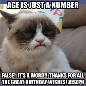 Birthday Grumpy Cat - Age is Just A Number FALSE!  It's a word!!  Thanks for all the great birthday wishes! Joseph