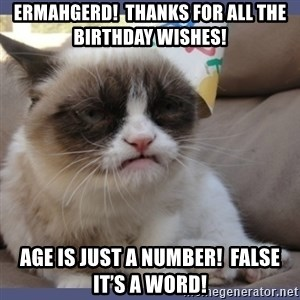 Birthday Grumpy Cat - ermahgerd!  Thanks for all the birthday wishes! Age is just a number!  FALSE it's a word!