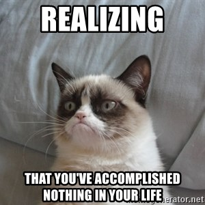Grumpy cat good - realizing  that you've accomplished nothing in your life