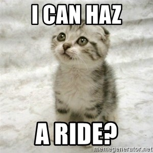 Can haz cat - i can haz a ride?