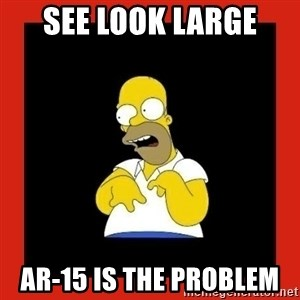 Homer retard - See look large AR-15 is the problem