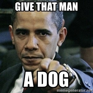 Pissed off Obama - GIVE THAT MAN A DOG