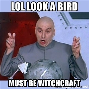 Dr Evil meme - lol look a bird  must be witchcraft