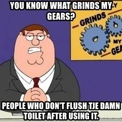 Grinds My Gears Peter Griffin - YOU KNOW WHAT GRINDS MY GEARS? PEOPLE WHO DON'T FLUSH TJE DAMN TOILET AFTER USING IT.