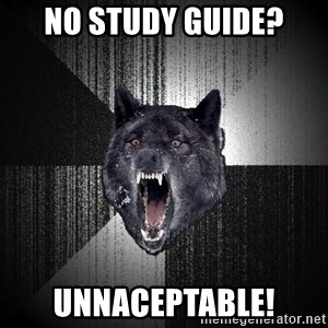 Insanity Wolf - no study guide? Unnaceptable!