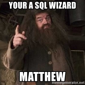 Hagrid - YOur a sql wizard  Matthew