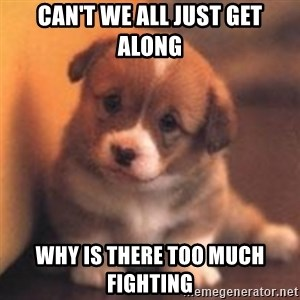 cute puppy - can't we all just get along why is there too much fighting