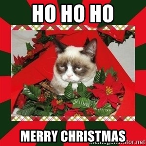 GRUMPY CAT ON CHRISTMAS - ho ho ho merry christmas