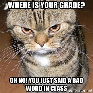 angry cat 2 - Where is your grade? Oh no! you just said a bad word in class