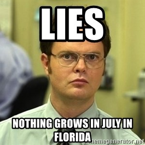 Dwight Schrute - LIES Nothing grows in July in Florida