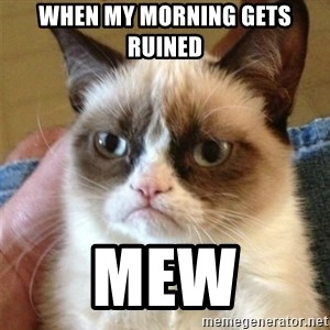 Grumpy Cat  - When my morning gets ruined Mew
