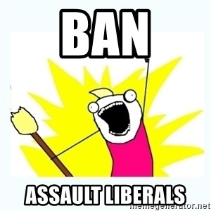 All the things - BAN ASSAULT LIBERALS