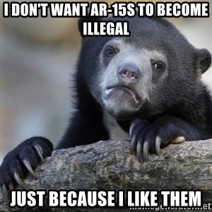 Confession Bear - I don't want AR-15s to become illegal just because I like them