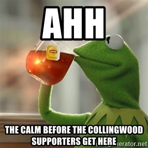 Kermit The Frog Drinking Tea - Ahh The calm before the Collingwood supporters get here