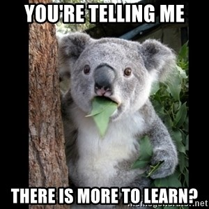 Koala can't believe it - You're telling me There is more to learn?