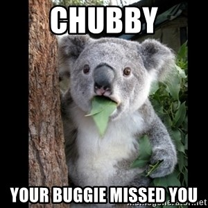 Koala can't believe it - Chubby Your buggie missed you