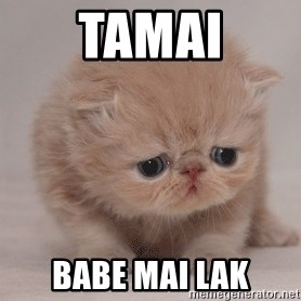 Super Sad Cat - Tamai Babe mai lak