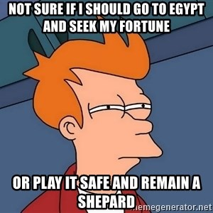 Futurama Fry - Not sure if I should go to Egypt and seek my fortune or play it safe and remain a shepard