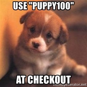 "cute puppy - Use ""puppy100"" at checkout"