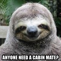 Sexual Sloth - anyone need a cabin mate?