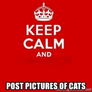 Keep Calm 2 - POST PICTURES OF CATS