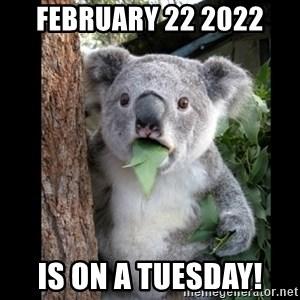 Koala can't believe it - February 22 2022 Is on a TUESDAY!