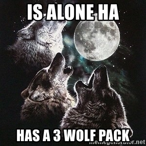 Lone Wolf Pack - is alone HA has a 3 wolf pack