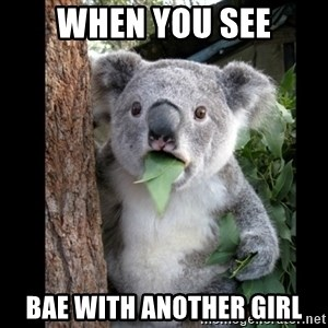 Koala can't believe it - when you see bae with another girl