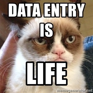 Grumpy Cat 2 - Data Entry Is                  LIFE