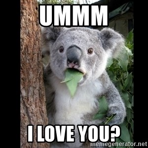 Koala can't believe it - Ummm I love you?