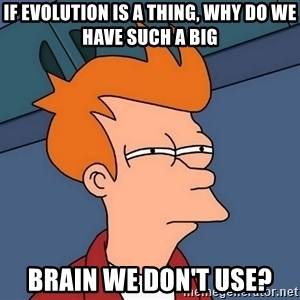 Futurama Fry - If Evolution is a thing, why do we have such a big brain we don't use?
